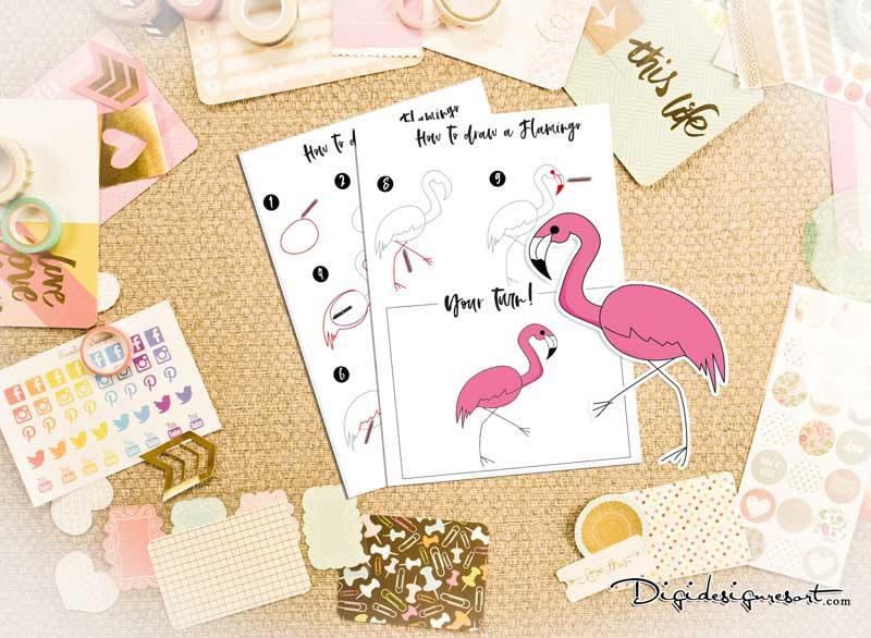 SKU_11006_How_to_draw_a_Flamingo_800_Prev