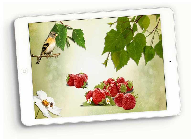 SKU_1015_Strawberries_800_Prev2