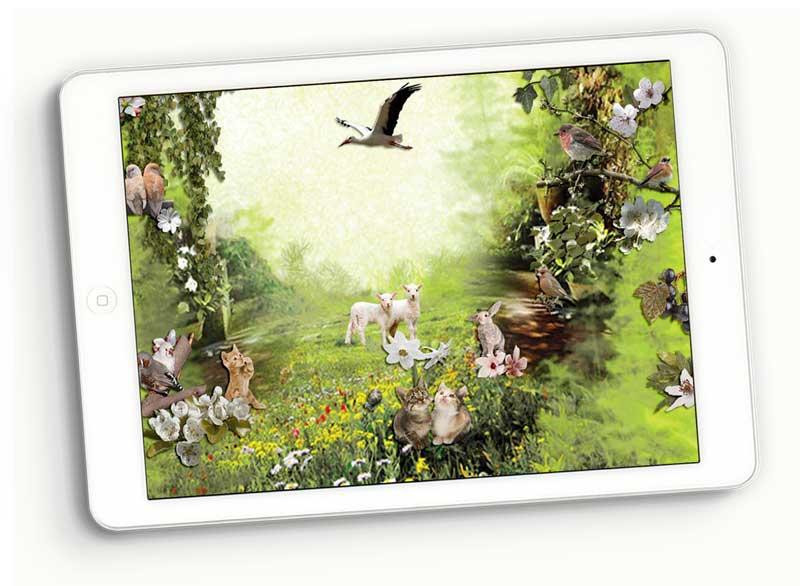 SKU_1029_Romantic_Spring_800_Prev2